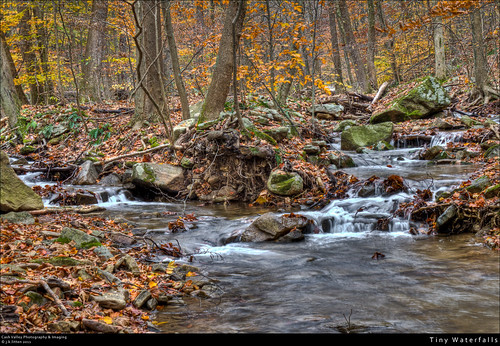 fall nature rural creek forest waterfall moss woods october rocks stream country scenic maryland environment hdr alleganycounty tributary mountsavage canont1i