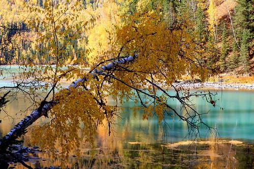 china travel autumn canon landscape xinjiang xiaomeisun