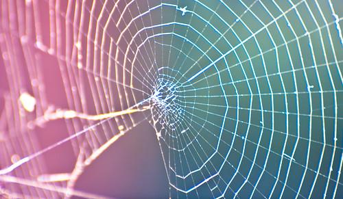 Spider Web Color Blend