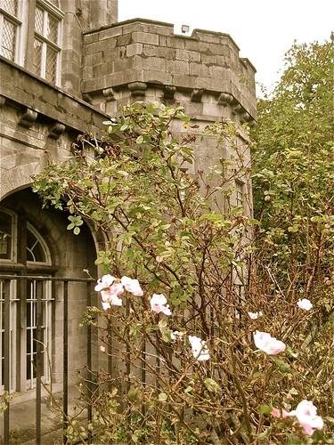 Kilkenny Castle 03