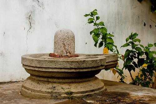 Lingam by Shillika