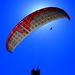 IMG_3758 by Reg Gorring (regwah)