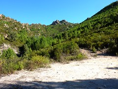Fin de la piste de Radichella et départ du sentier direct de Capeddu vers le col et l'aiguille 726m