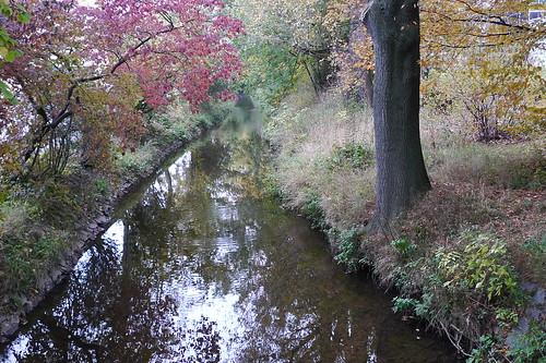 Eschbach bei Harheim, herbstlich. Oktober 2011