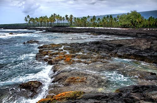 ocean beach coral landscape hawaii lava nikon surf waves pacific tidepools kona kailua oceanfront cityofrefuge bigislandofhawaii royalgrounds puuhonauohonaunau nikond7000 mygearandme hawaiianvirtualtours
