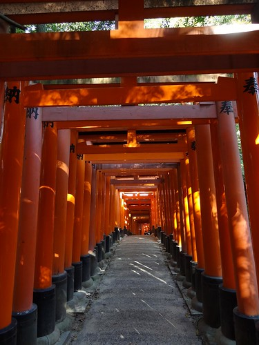 Fushimi Inari-taisha by girl from finito
