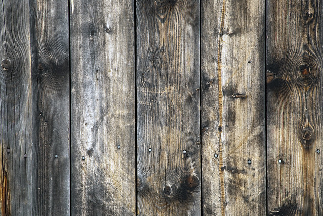 Weathered Wall Paneling : Texture weathered pine panels as wall flickr photo