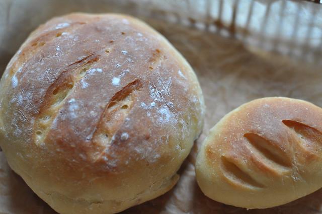 no knead #3-6
