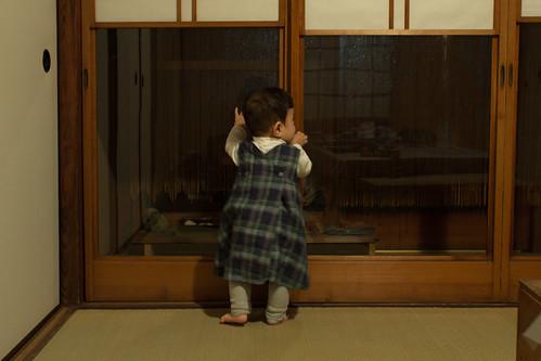 Honkomagome 19 Nov 2011