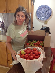 Tomatoes : Just Can't Get Enough by mikeysklar