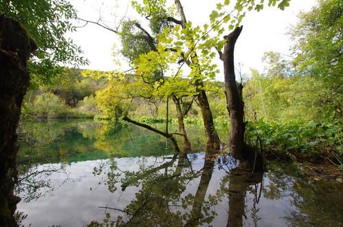 湖のある風景37
