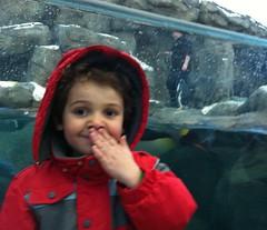 20120325 calgary zoo - 25