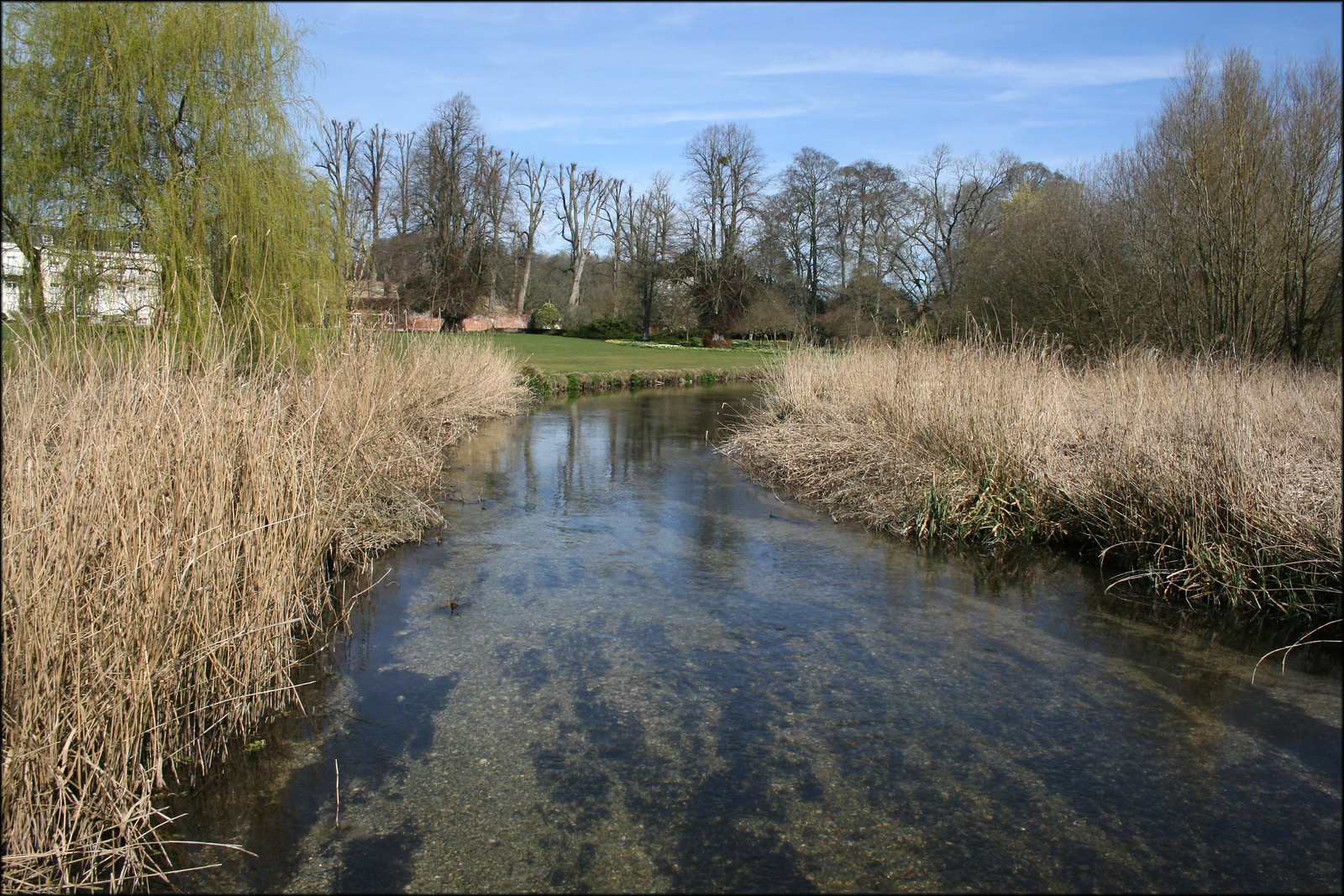 The River Test near Longparish