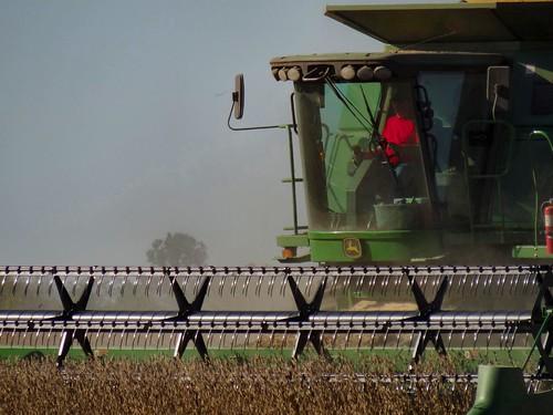 tractor field rural beans farm sony harvest indiana farmer orangecounty dust blades johndeere soybeans pickingbeans