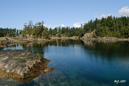 ocean trees cloud canada reflection tree nature water rock clouds forest reflections nikon rocks shore