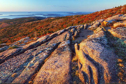 autumn fall sunrise landscape golden nationalpark horizon maine newengland glacier erosion granite barharbormaine acadia barharbor redleaves acadianationalpark fallseason autumnseason glacieraction