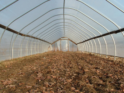 commercial greenhouse planning
