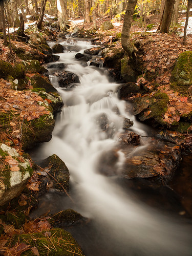 autumn fall nature water forest landscape woods rocks stream nh brook cascade