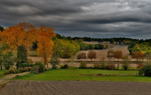 The Contrasting Autumn Colours in the Dordogne!