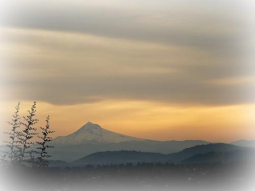 trees mountain clouds oregon sunrise portland hills mthood softlight mttabor odc1