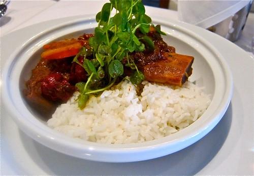short rib stew at erbe matte