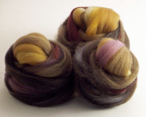 Southern Cross Fibre - Polwarth - Autumn Leaves - prepped