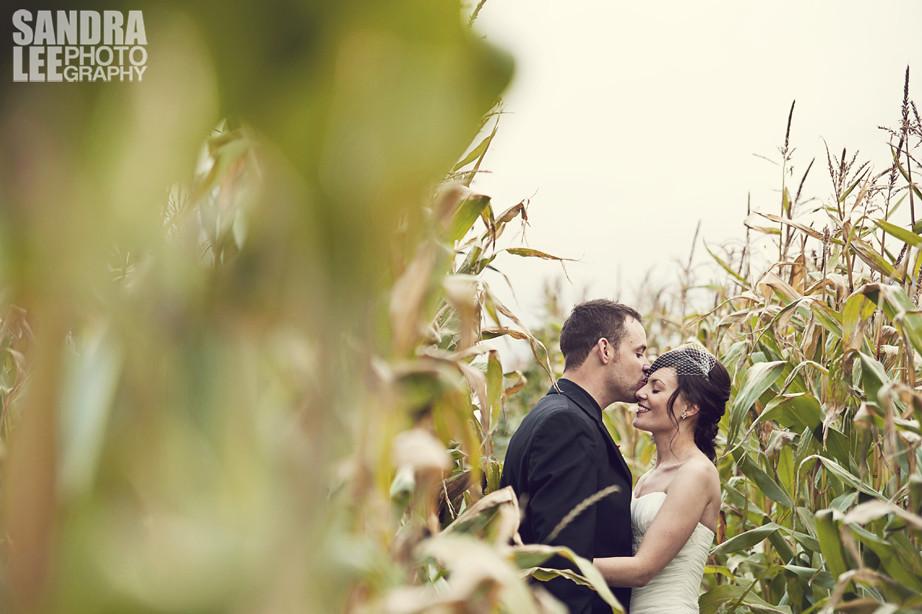 Humber valley wedding