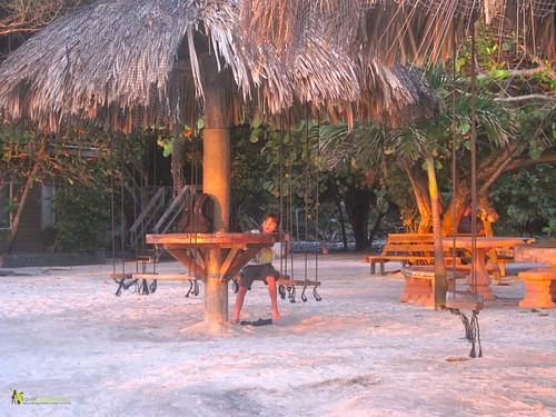 Fosters Restaurant Swings for Chairs Sunset Roatan Honduras