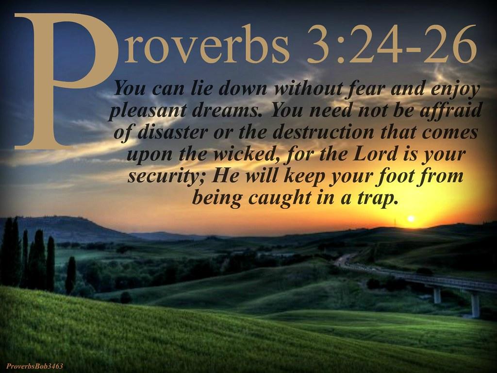 Proverbsbob3463 S Most Interesting Flickr Photos Picssr