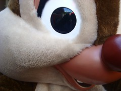 nose, textile, fur, plush, stuffed toy, organ, toy,