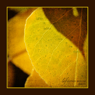 A golden life (leaf)