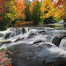 """Leaves on the Stream""  Bond Falls -  Paulding , Michigan"