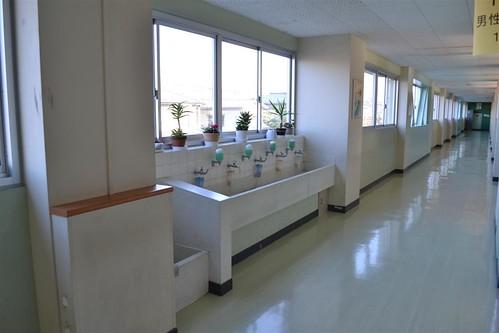 Напротив каждого туалета – рукомойники