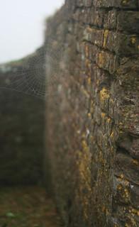 Attēls no Charles Fort pie Kinsale. mist brick bokeh spiderweb kinsale dew lichen hazy charlesfort