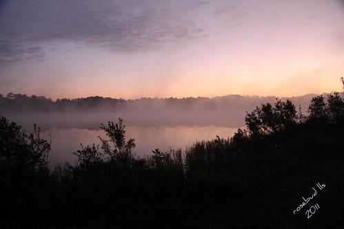 pink water fog sunrise georgia laurawalkerlake laurawalkerstatepark