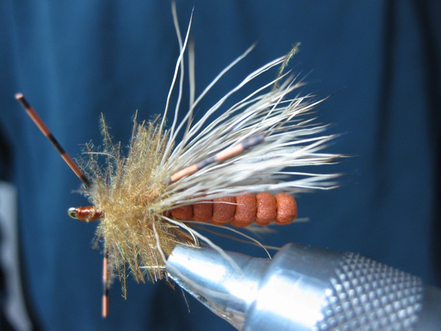 Extended Body Foam October Caddis