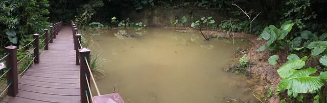 富陽公園水池