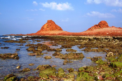 Di Hamri coral reefs