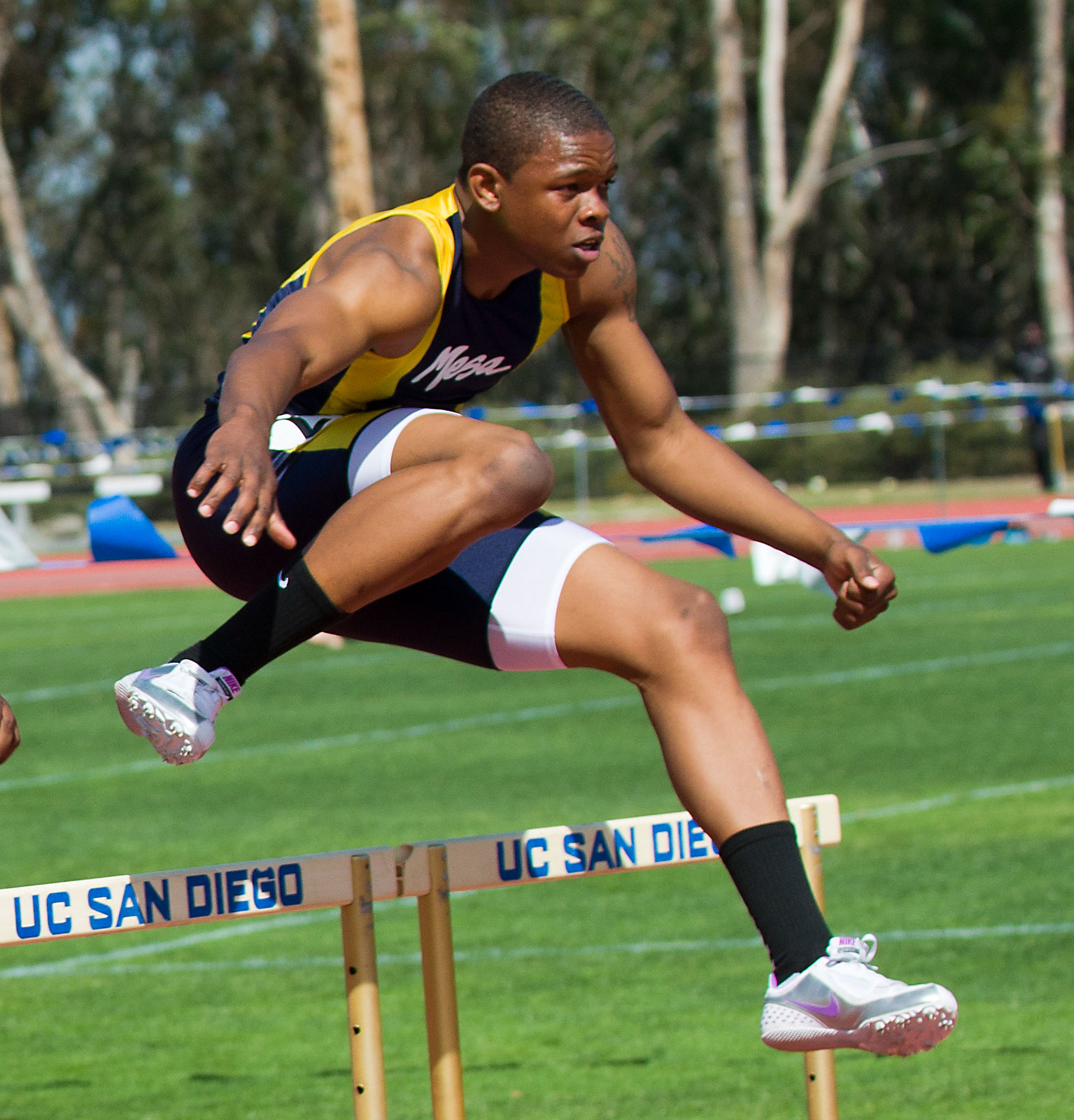 110 meter hurdle trtaining program Muscle essays and research papers | examplesessaytodaybiz  consider important in their own fitness program  110-meter hurdle trtaining program.