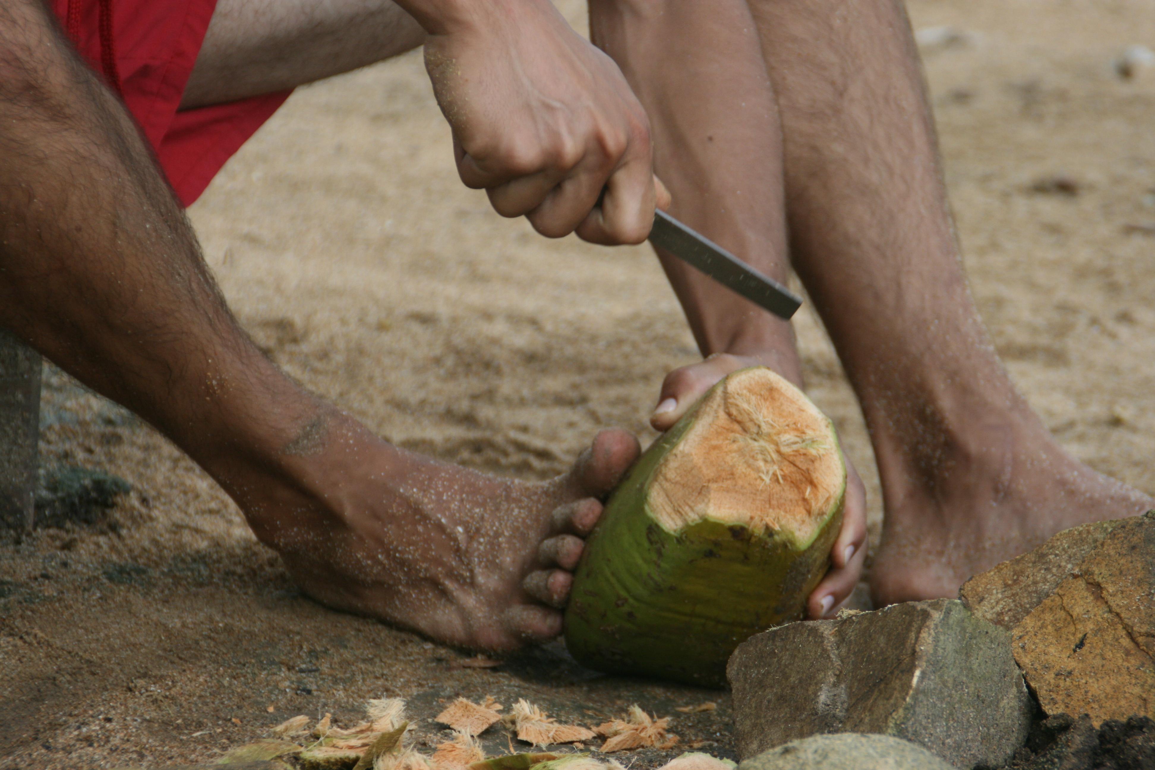 Com obrir i menjar-se un coco 4
