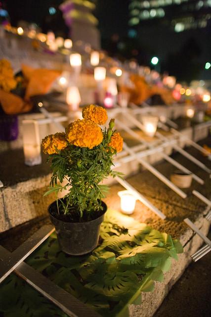 Marigolds Mexico Dia de Los Muertos