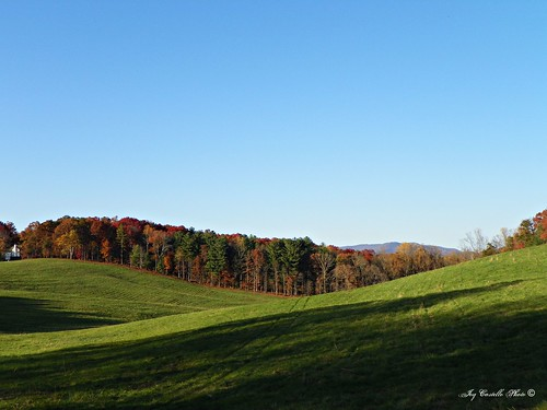 autumn trees mountains color fall georgia fallcolor hills fields greenfield gilmercounty