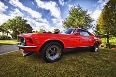 Mustang Mach 1 428