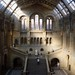 Natural History Museum Light by jakem