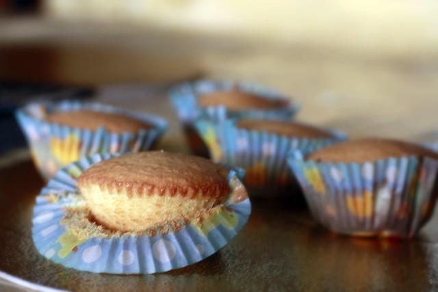 kalamansi cupcakes/muffins 2