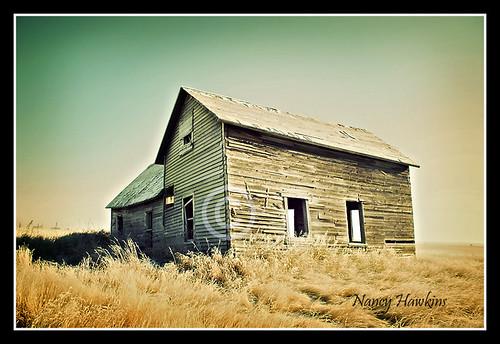 The Old Homestead by Nancy Hawkins