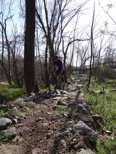 Biking downtown Mar 18 2012 (50)