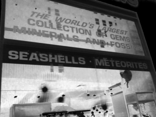 Seashells and Meteorites! Yes please.