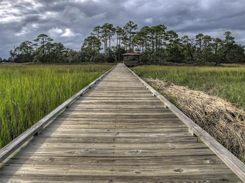 trees grass clouds island straw stormy boardwalk marsh beaufort