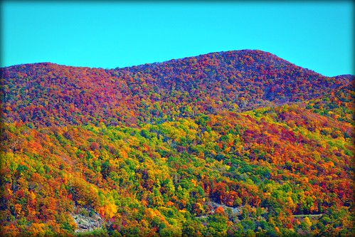 blue autumn trees red orange white black green nature colors yellow digital canon outdoors cool warm seasons ridge parkway